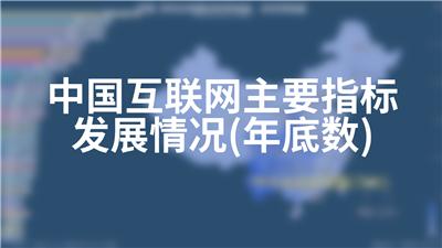 中国互联网主要指标发展情况(年底数)