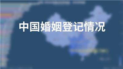 中国婚姻登记情况
