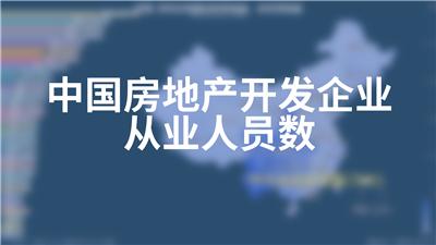 中国房地产开发企业从业人员数