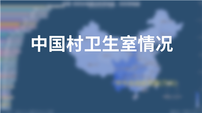 中国村卫生室情况