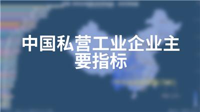 中国私营工业企业主要指标