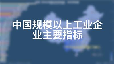 中国规模以上工业企业主要指标