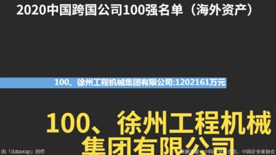 2020中国跨国公司100强名单(海外资产)