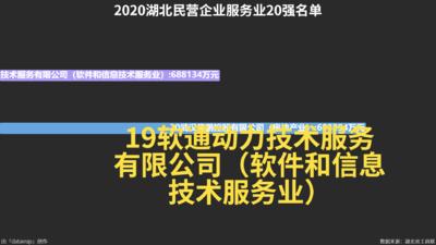2020湖北民营企业服务业20强名单
